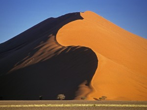 Dune 45 in the Namib Desert